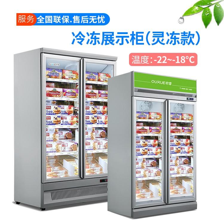大型冷冻柜超市生鲜柜 冷冻食品展示柜冰柜报价