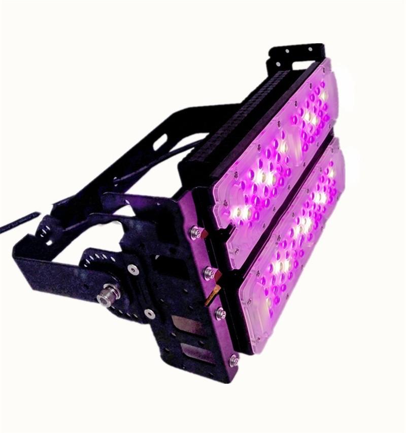 农业照明植物生长灯100W种植大棚补光灯150W全光谱红蓝光配比200W