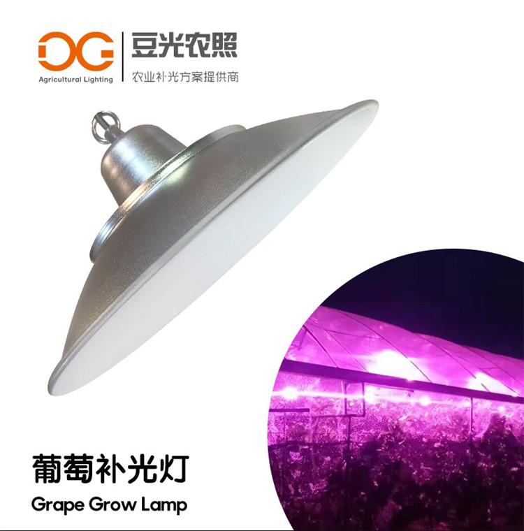 葡萄专用光照灯 LED植物生长灯 反季栽培暖棚补光灯