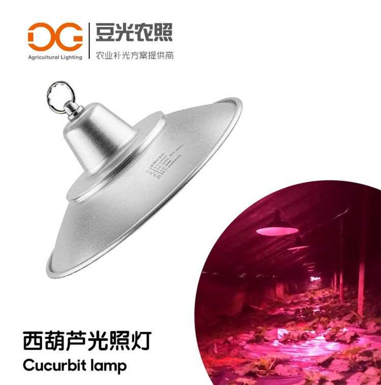 西葫芦专用光照灯\LED植物生长补光灯\促雌花\降低节位